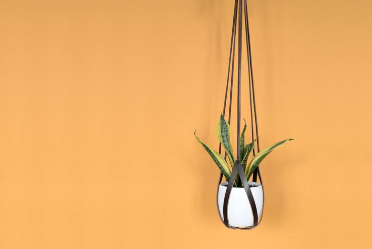 lade 4 dark brown leather hanging planter
