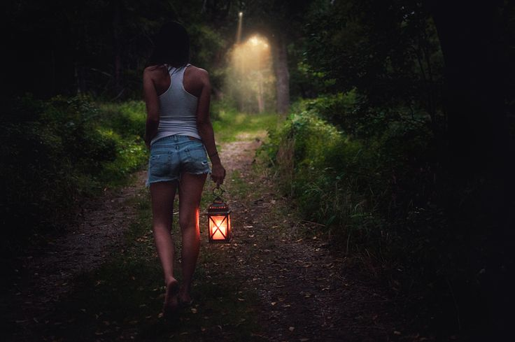 Journey Through The Woods      What a fantastic shot, as a photographer I appreciate the skill this shot took, balancing all of the light sources so beautifully.
