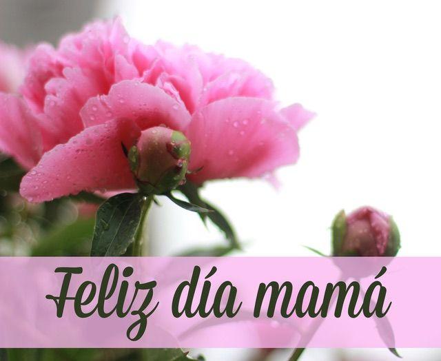 26 lindas frases para decirle a mamá en el día de las madres