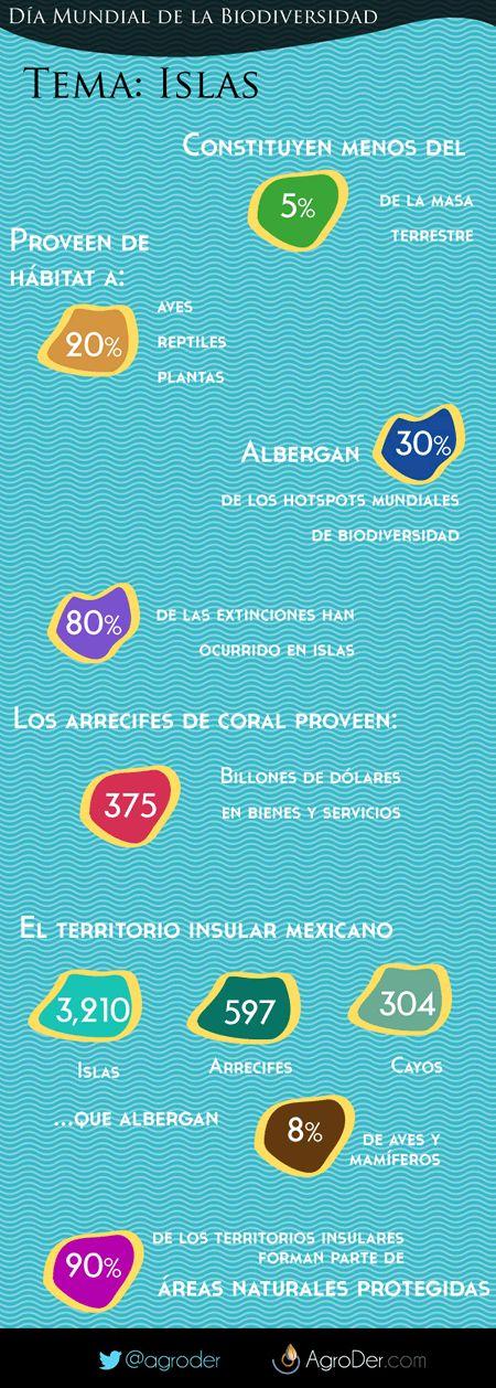 #Infografia Algunos datos de por qué las #islas son importantes en el Día Internacional de la #Biodiversidad http://goo.gl/FybFGc  #IDB2014