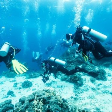 Advance-diving-in-taganga-tour-santa-marta-colombia-lulo