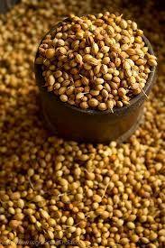 Al incrementar la ingestión de fibra, las semillas de cilantro ayudan a mejorar la salud digestiva y cardíaca.