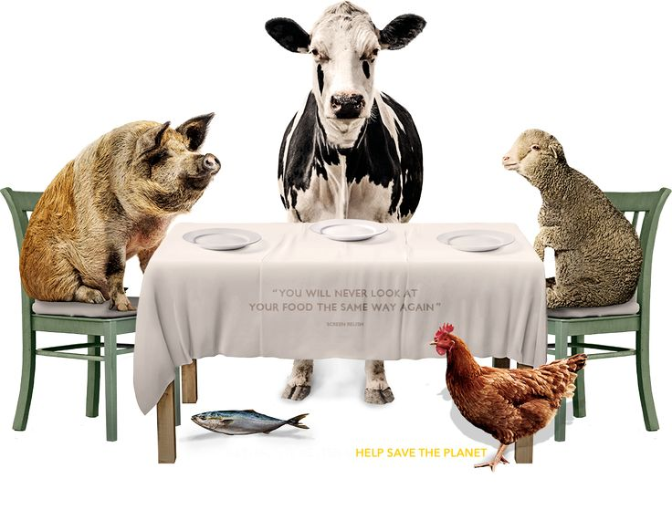 This globally acclaimed film explores the impact of food choices on human health, on the environment and on the lives of other living species.