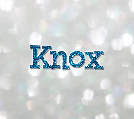 Knox: Name Meaning, Popularity, and Similar Names