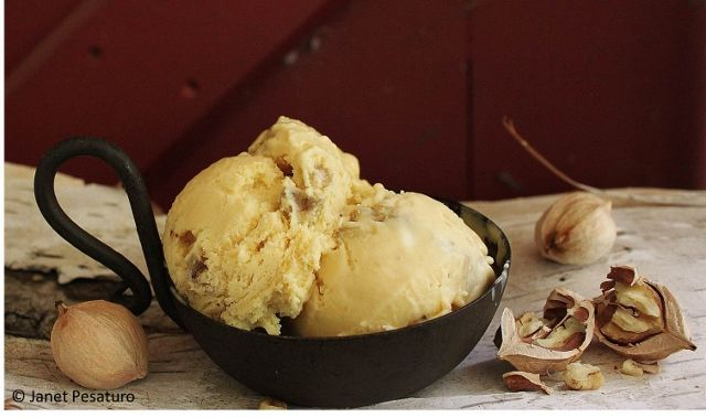 This recipe for birch syrup ice cream features the warm, spicy, caramel tones of the syrup, accented with crunchy pockets of buttered wild hickory nuts.