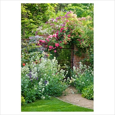 Great garden entrance! Pathway leading through perennials to a rose-covered brick wall with iron gate and brick wall with climbing Rosa 'Chevy Chase', 'Kiftsgate' - rambling Roses and R. 'Rosarium Uetersen' and 'Veilchenblau'. Catalpa bignonioides, Centranthus ruber 'Albus' and Salvia nemorosa in borders | Photographer: Christa Brand