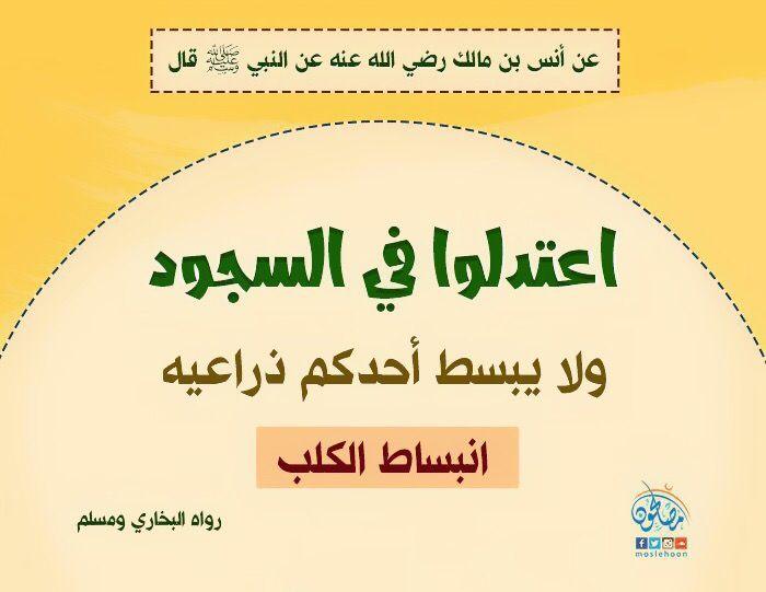 Pin By نشر الخير On أحاديث سيدنا محمد صلى الله عليه وسلم Pie Chart Chart Islam