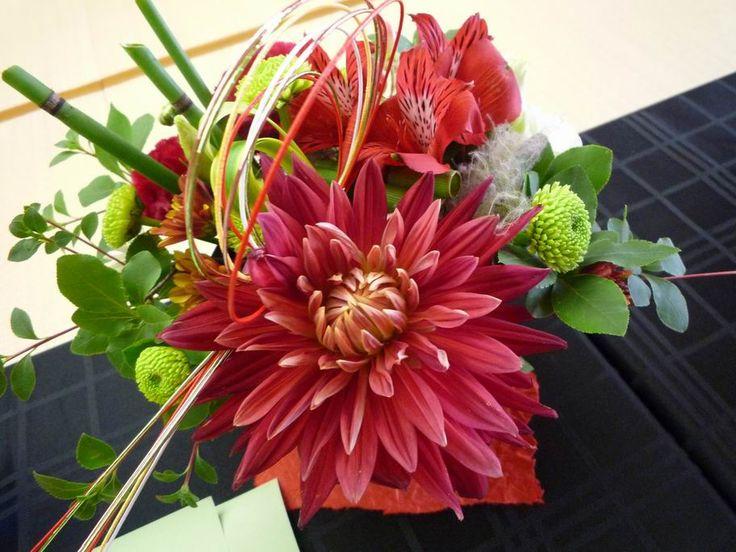 【Jul】Chrysanthemum 菊