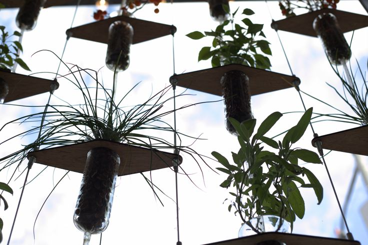 Hydroponics at home: It doesn't have to be hard, or ugly