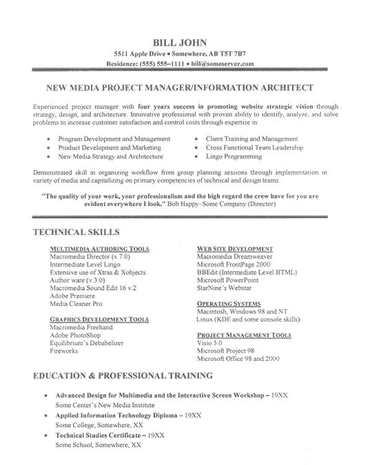 it project manager resume doc