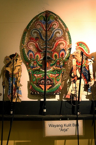 Puppet Museum::Detail of Wayang Kulit Bali #PINdonesia