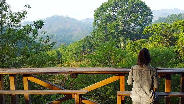 Conoce estos hoteles de Guatemala que están en medio de la selva, con un clima caluroso y una vista espectacular, estos hospedajes te van a encantar.