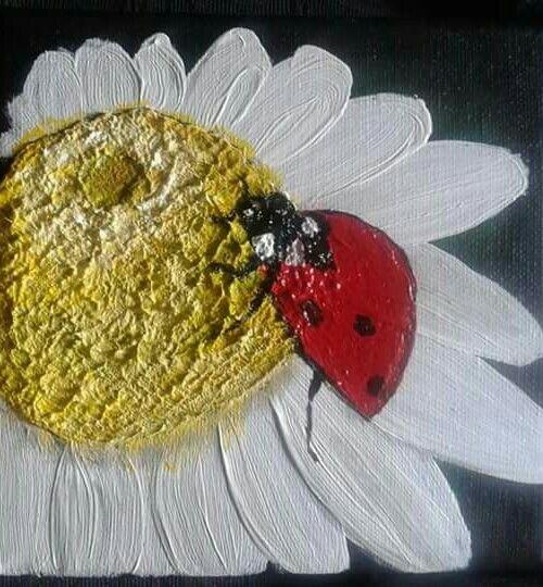 Ladybird series 5