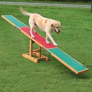 Le attività o gli esercizi svolti in coppia solidificano il rapporto di fiducia tra cane e conduttore oltre a mantenere il binomio in forma perfetta.