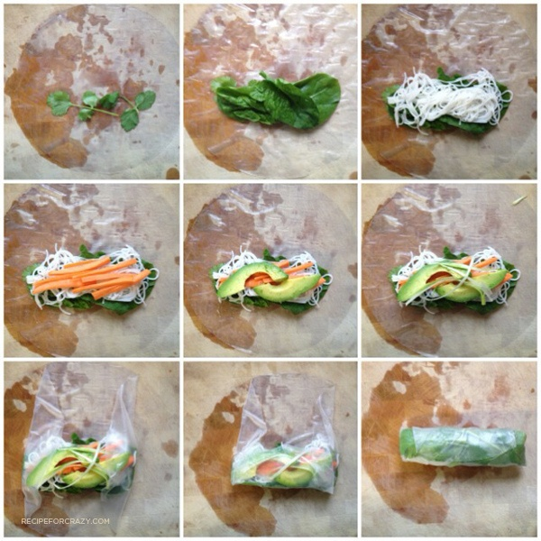 Spring Roll ~ step-by-step by Lesley Zellers