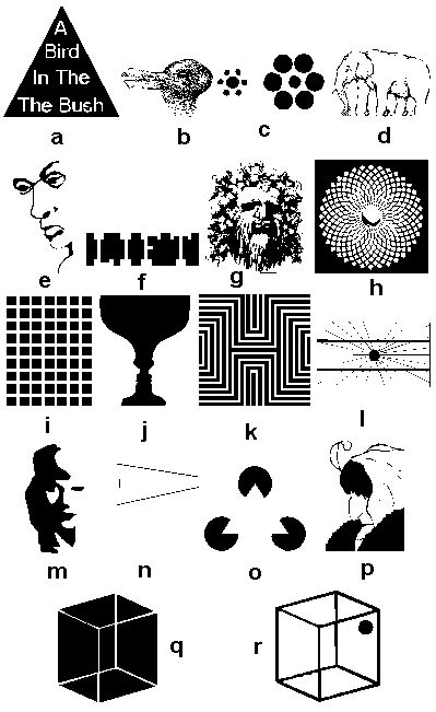 optical illusions worksheets magic illusion tricks pdf learn cool letter teaching ways children thinking moving