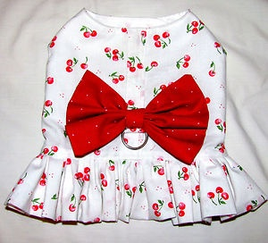 New dog harness dresses! I am loving the cherries! Come look awesome fit! $7.98