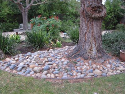 stones around tree google search