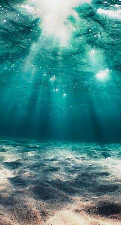 Ich werde dieses Bild als Hintergrund verwenden – nature – #als #Bild #dieses