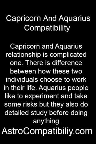 sagittarius and capricorn work relationship
