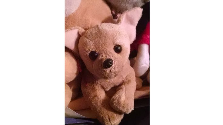 """CHIHUAHUA Plush 5"""" Puppy Dog, Vintage Walmart 80s 90s by Times3Vintage on Etsy"""