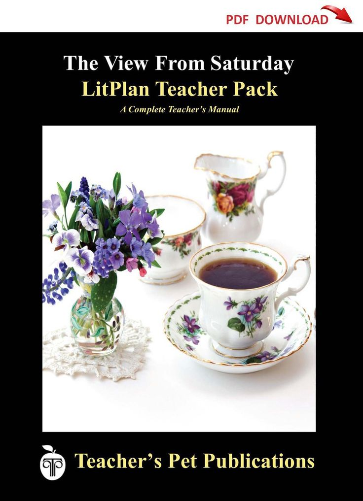 The View From Saturday Lesson Plans | LitPlan Teacher Guide