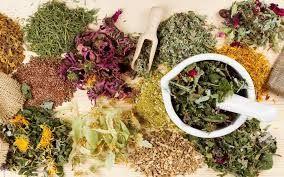 Female health (gynecology) Siberian Tea – 100% natural Siberian herbs that conta… – Anette Frye