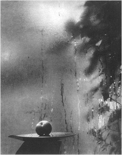 Josef Sudek, From the Window of my Studio