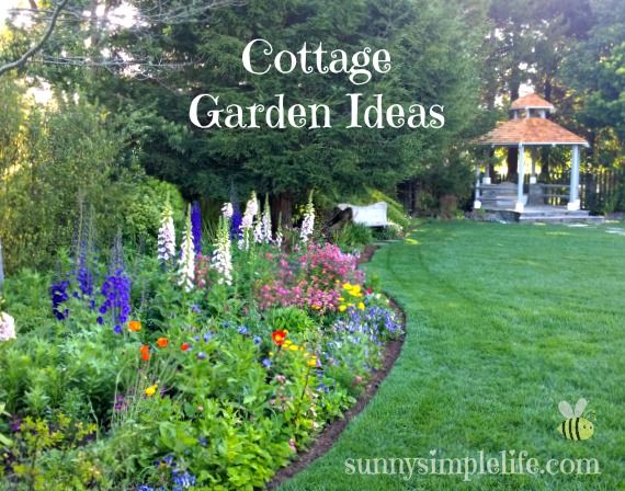 Cottage garden ideas the blog for Sunny landscape designs