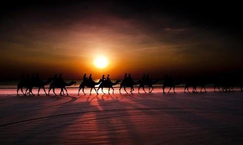 Caravan in the sahara desert (southern Egypt)