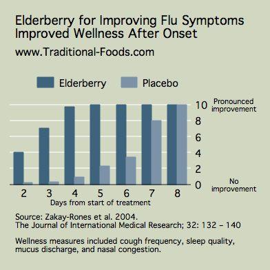 Elderberry for Flu Symptoms @ Traditional-Foods.com
