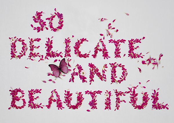 So Delicate and Beautiful. on Behance
