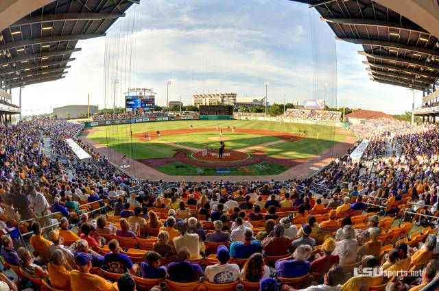 Baseball to Host Stony Brook in Super Regional - LSUsports.net - The Official Web Site of LSU Tigers Athletics