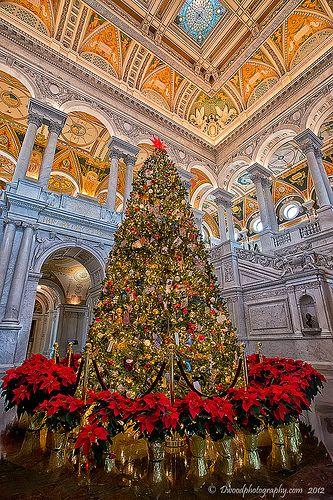 Christmas Tree of Knowledge - Library of Congress, Washington, DC