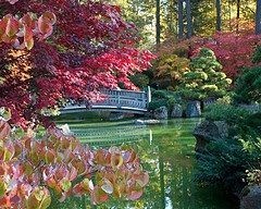 One of my favorite places on earth. Manito Park, Spokane, WA