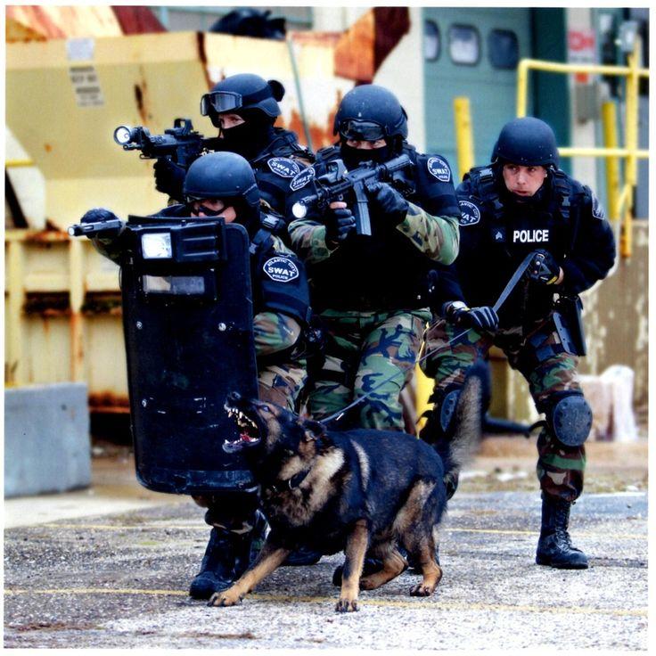 SWAT & their GSD!! Woo hoo!!