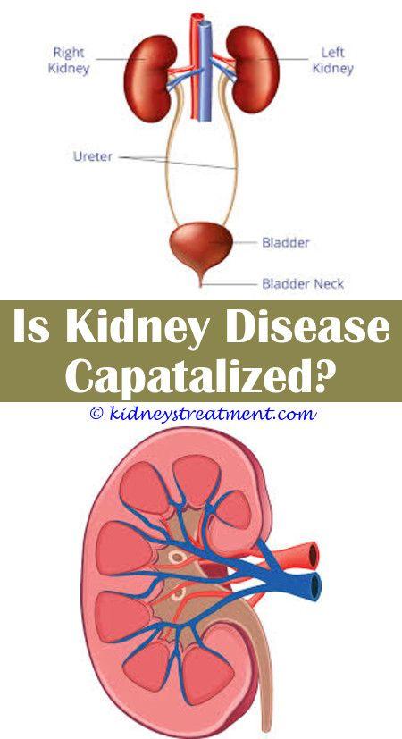 Kidney Cleanse Blood Sugar Kidney Disease Symbol Pinterest