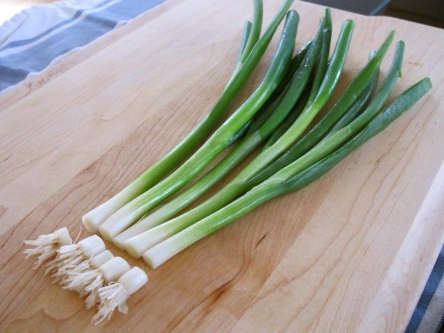 Save Money: DIY An Endless Supply Of Green Onions | Green Onions with Cut Ends