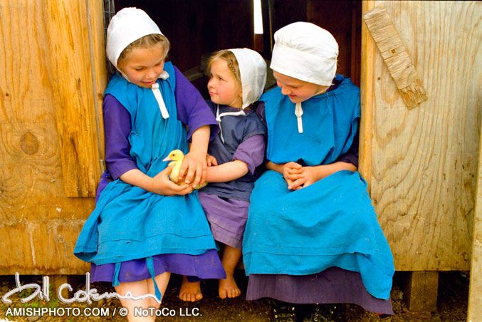 Mennonite Country Style Recipes >> 17 Best images about Mennonites and Amish on Pinterest | Museums, Chocolate covered cherries and ...