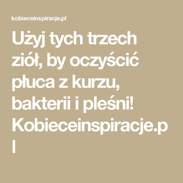 Użyj tych trzech ziół, by oczyścić płuca z kurzu, bakterii i pleśni! Kobieceinspiracje.pl