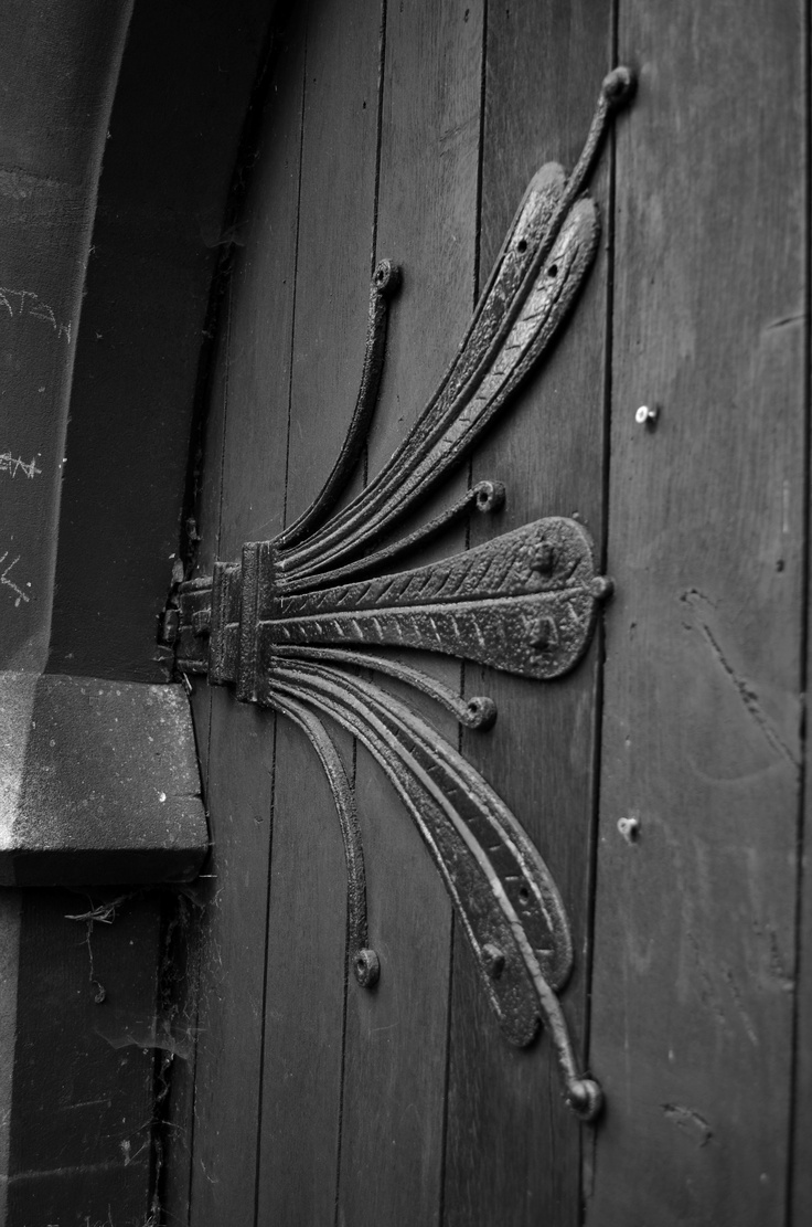 Amazing door hinge. Looks like a fairy wing~