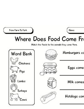 this three page activity packet helps students to understand that all food comes from plants and. Black Bedroom Furniture Sets. Home Design Ideas