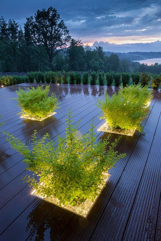 plant linear lighting outdoor plant feature led strip lighting greenery deck