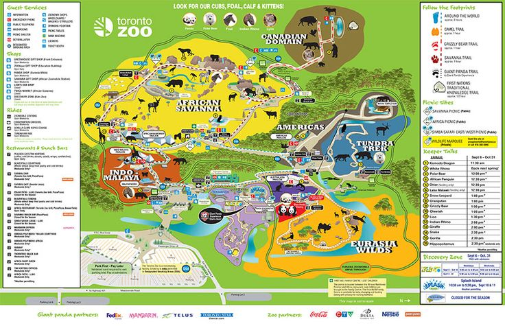 Résultats de recherche d'images pour «Toronto Zoo»
