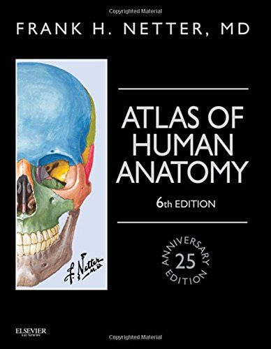 Atlas of Human Anatomy, Professional Edition: including NetterReference.com Access with Full Downloadable Image Bank, 6e (Netter Basic Science)