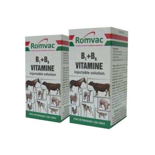 B1 + B6 Injectabil 20 ml