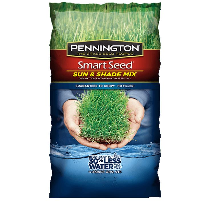 Smart Seed® Sun and Shade - Grass Seed | Pennington
