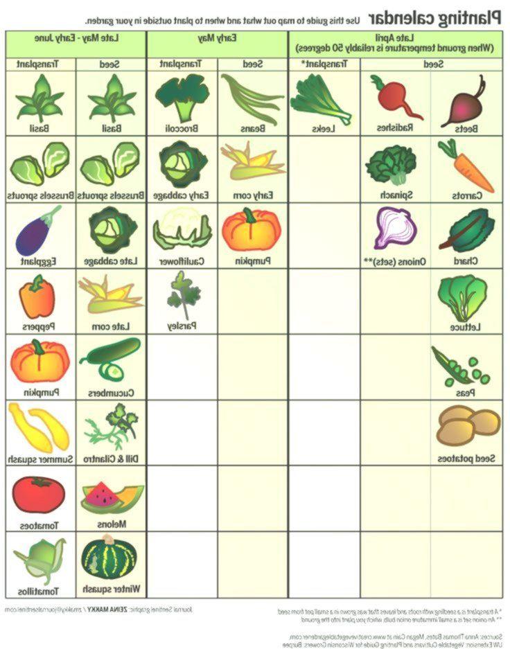 Spring Garden Calendar When To Plant Fruits And Vegetables In Wisconsin Garden Calendar Spring Garden Spring Plants