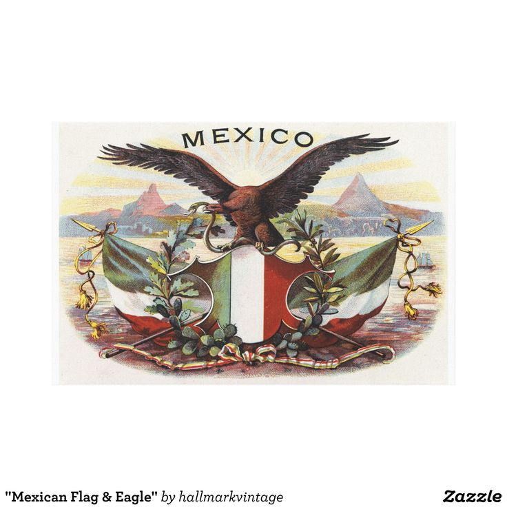 """Mexican Flag & Eagle"" Canvas Print"