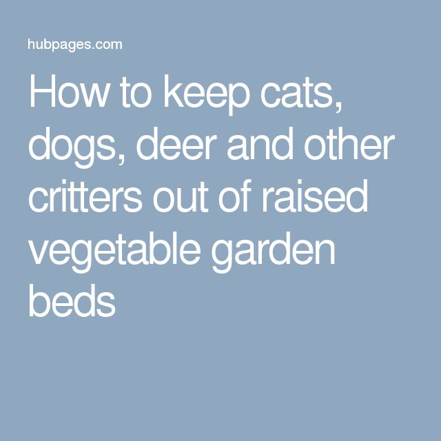 216 Best Images About Vegetable Garden On Pinterest Gardens Raised Beds And Raised Bed Gardens